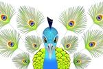 Gifted Illustrator's on Fiverr